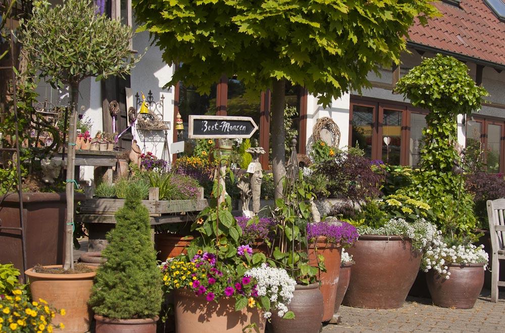Galerie Blumen Franzen Floristik Und Gartnerei In Der Ried In